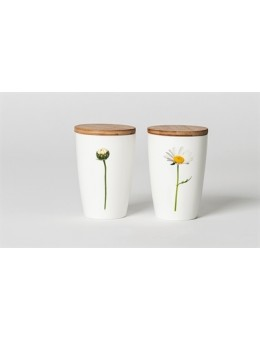 Simply Flowers 08 Marguerit Latte-20